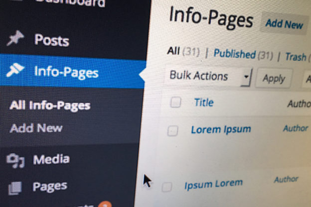 Wordpress als CMS: Seiten-Typen definieren